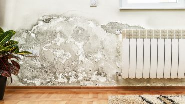 what causes mould in a house