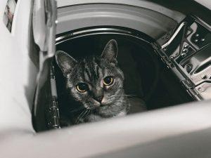 best small tumble dryer